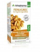 Arkogélules Fenugrec Bio Gélules Fl/40 à Chelles