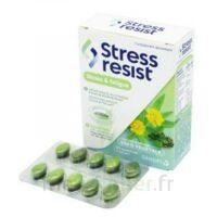 Stress Resist Comprimés Stress & Fatigue B/30 à Chelles