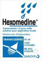 Hexomedine Transcutanee 1,5 Pour Mille, Solution Pour Application Locale à Chelles