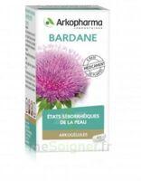 Arkogelules Bardane Gélules Fl/45 à Chelles
