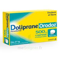 Dolipraneorodoz 500 Mg, Comprimé Orodispersible à Chelles