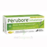 Perubore Caps Inhalation Par Vapeur Inhalation Plq/15 à Chelles