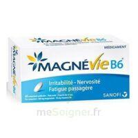 Magnevie B6 100 Mg/10 Mg Comprimés Pelliculés Plaq/60 à Chelles