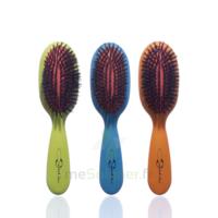 Cartel Brosse Cheveux Pneumatique Sanglier /1 à Chelles
