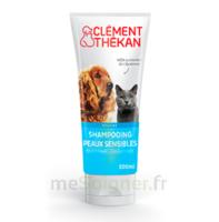 Clément Thékan Shampooing peaux sensibles T/200ml à Chelles