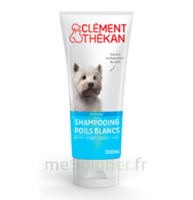 Clément Thékan Shampooing poils blancs T/200ml à Chelles