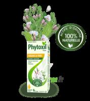 Phytoxil Toux Sans Sucre Sirop Adulte Enfant +2 Ans Fl/120ml à Chelles