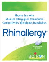 Boiron Rhinallergy Comprimés B/40 à Chelles