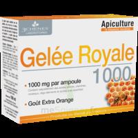 3 Chenes Phytotherapie Familiale Solution Buvable Gelée Royale 1000 10 Ampoules/10ml à Chelles